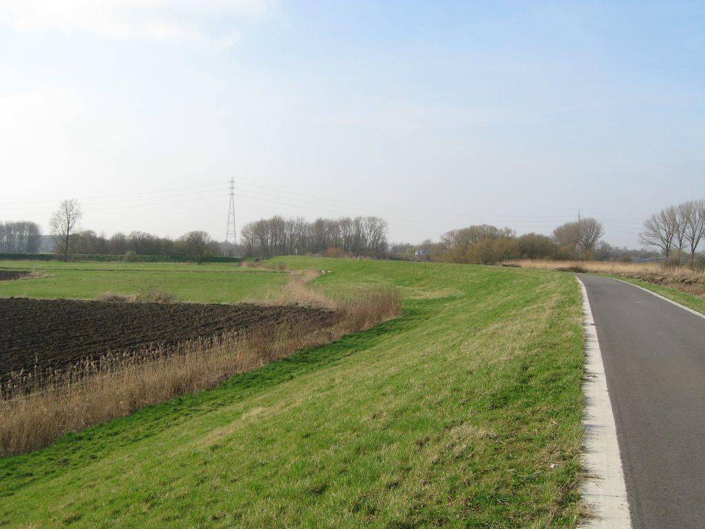 River dike near Dendermonde (illustration).